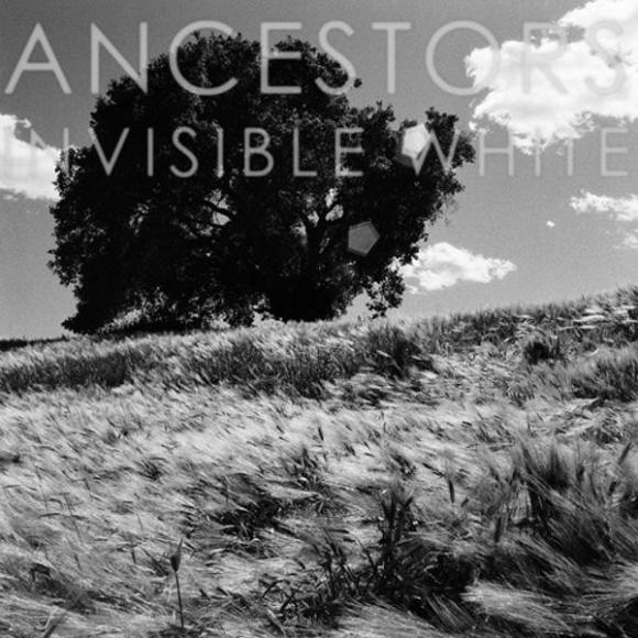 http://10000visions.cowblog.fr/images/Ancestors.jpg